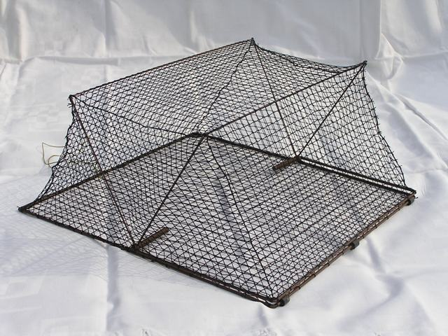 CST35-Cage spring trap for trapping rails and crakes. Base dimensions: 35x35 cm