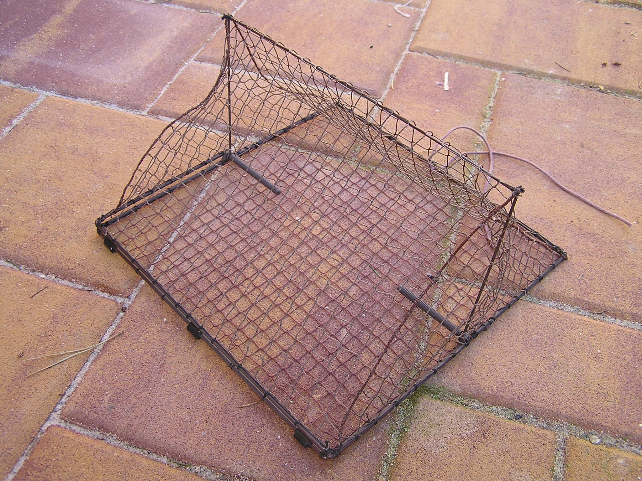 TSB25 - Tent spring trap for trapping small birds. Base dimensions: 25x25 cm